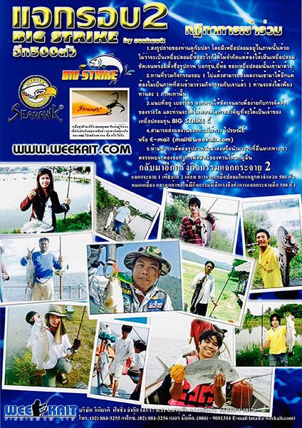 Leaflet Promotion